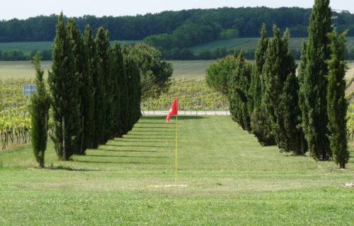 swing golf macqueville Cep enchanté