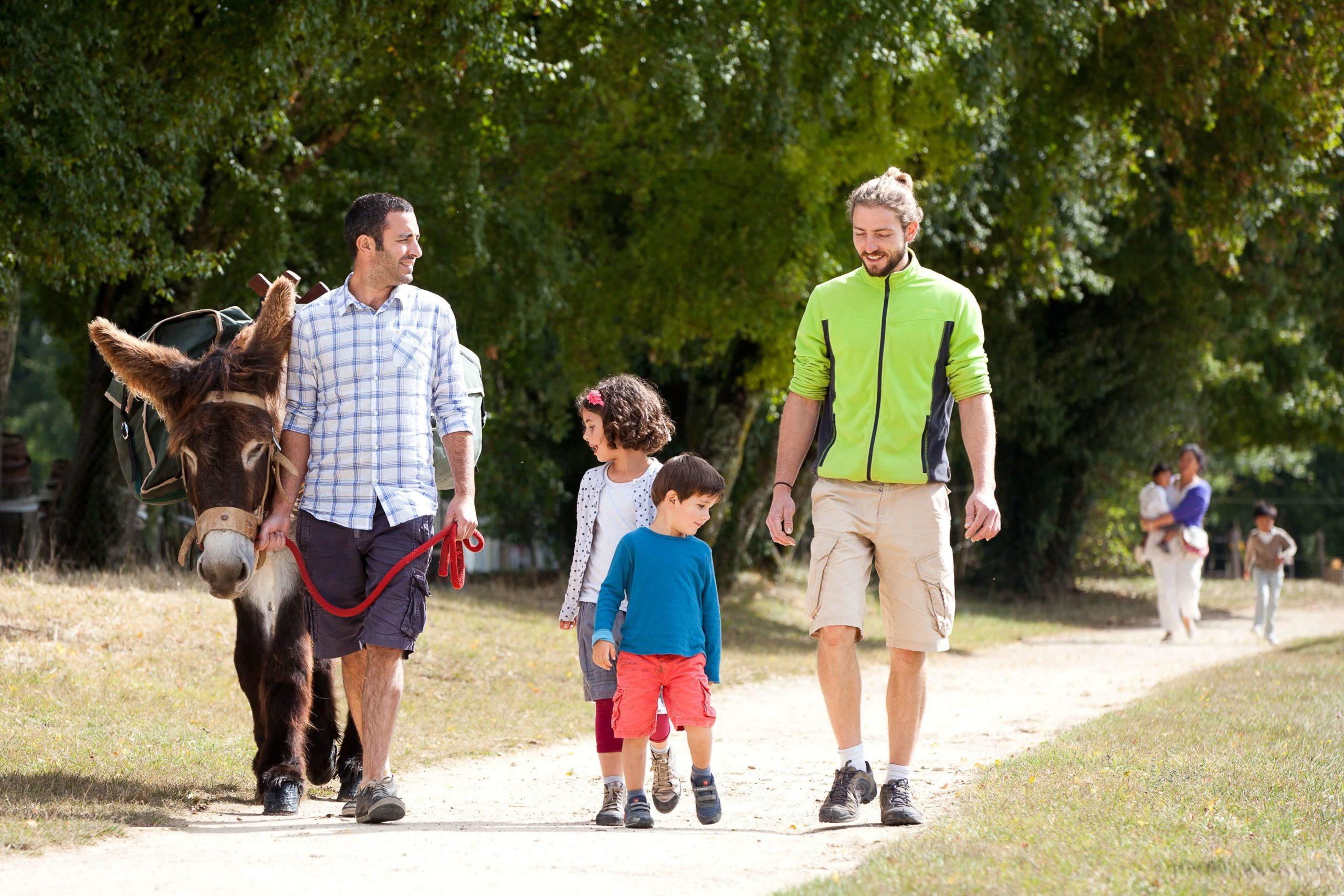 balade avec un âne à l'asinerie